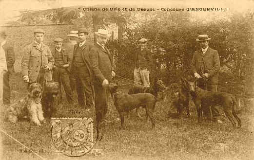 concours_chiens_Angerville July1907.jpg