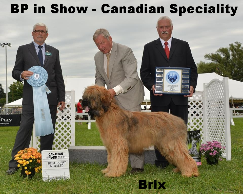 BPIS Canadian Speciality.jpg