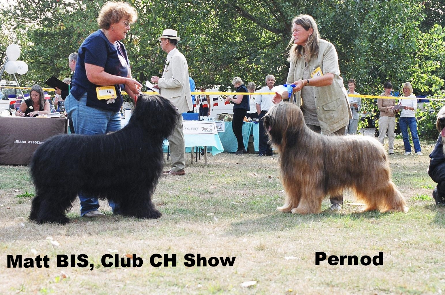 Matt&Pernod Best and RB Dog Club Ch Show.jpg
