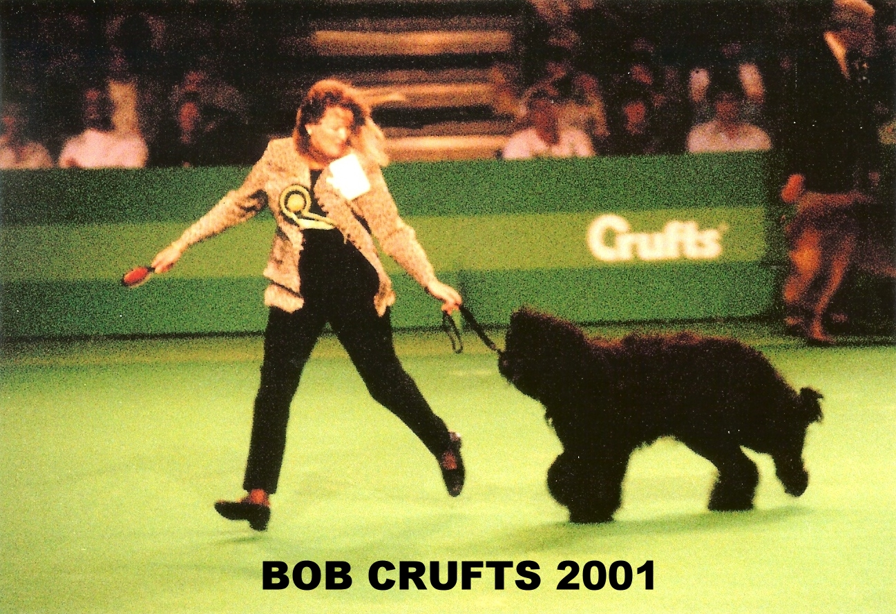 Matt Crufts BOB photo Dave Freeman.jpg