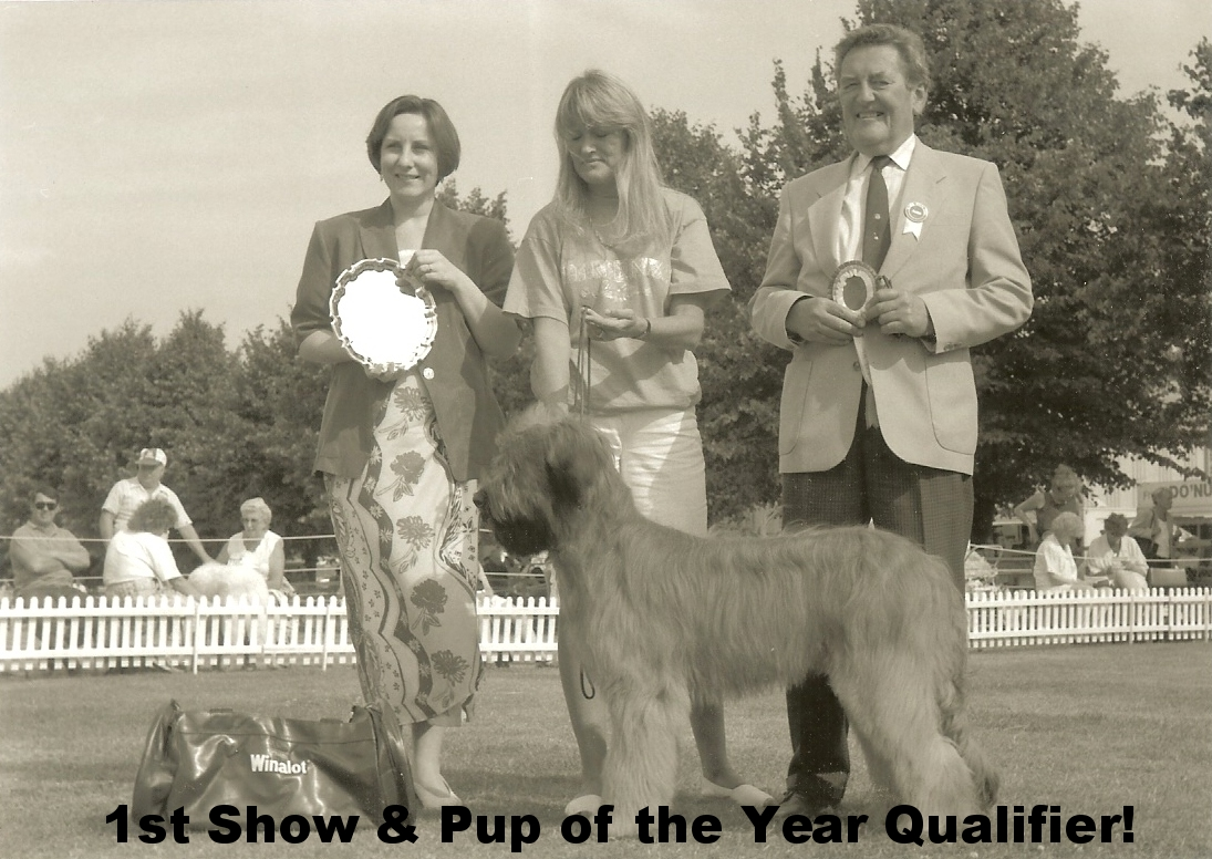 Pup of the Year Finalist - 6 mths 1st show.jpg