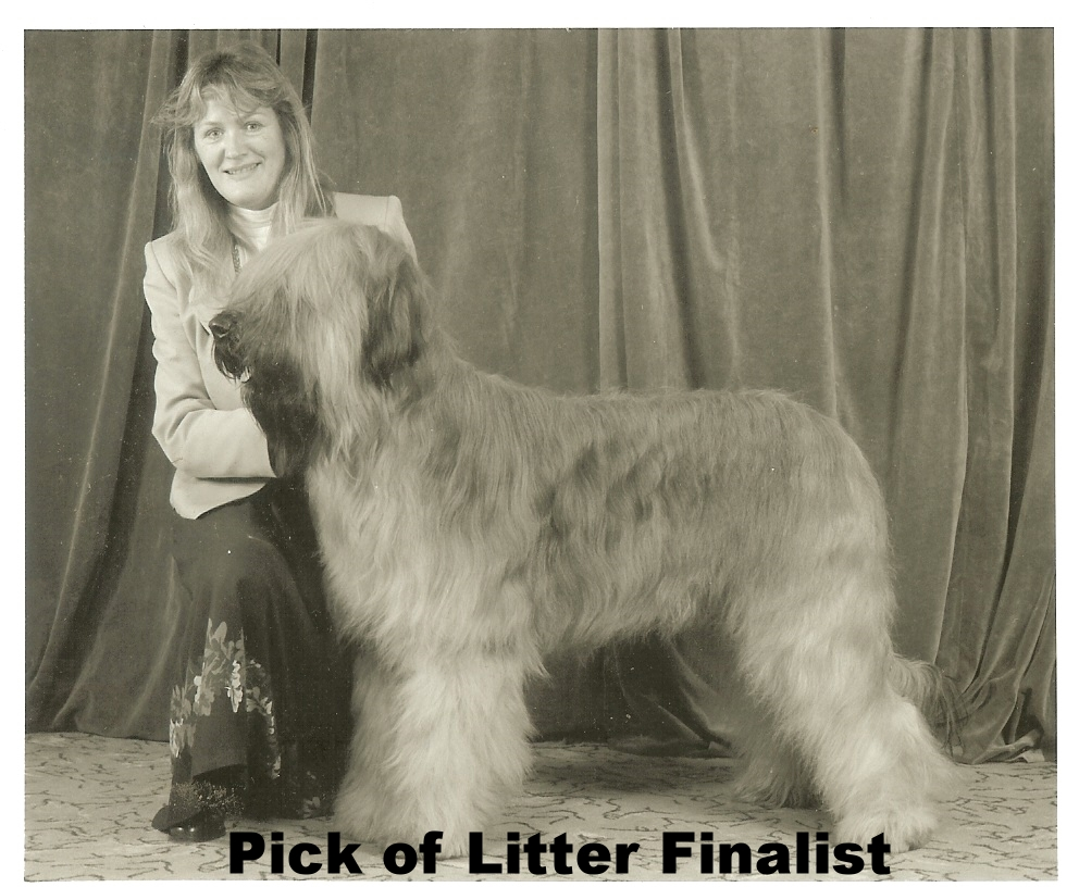 Pick of Litter Finalist.jpg