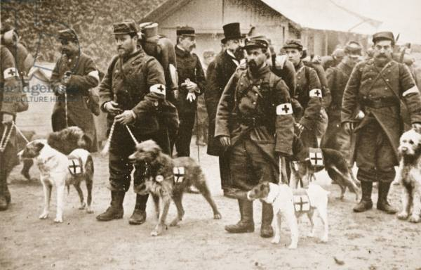 French Red X and canine helpers leaving for the front..jpg