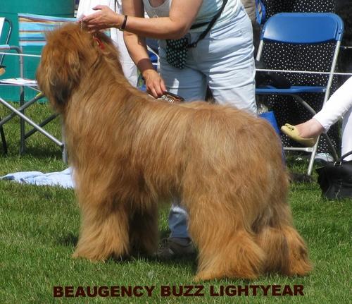 Beaugency Buzz Lightyear