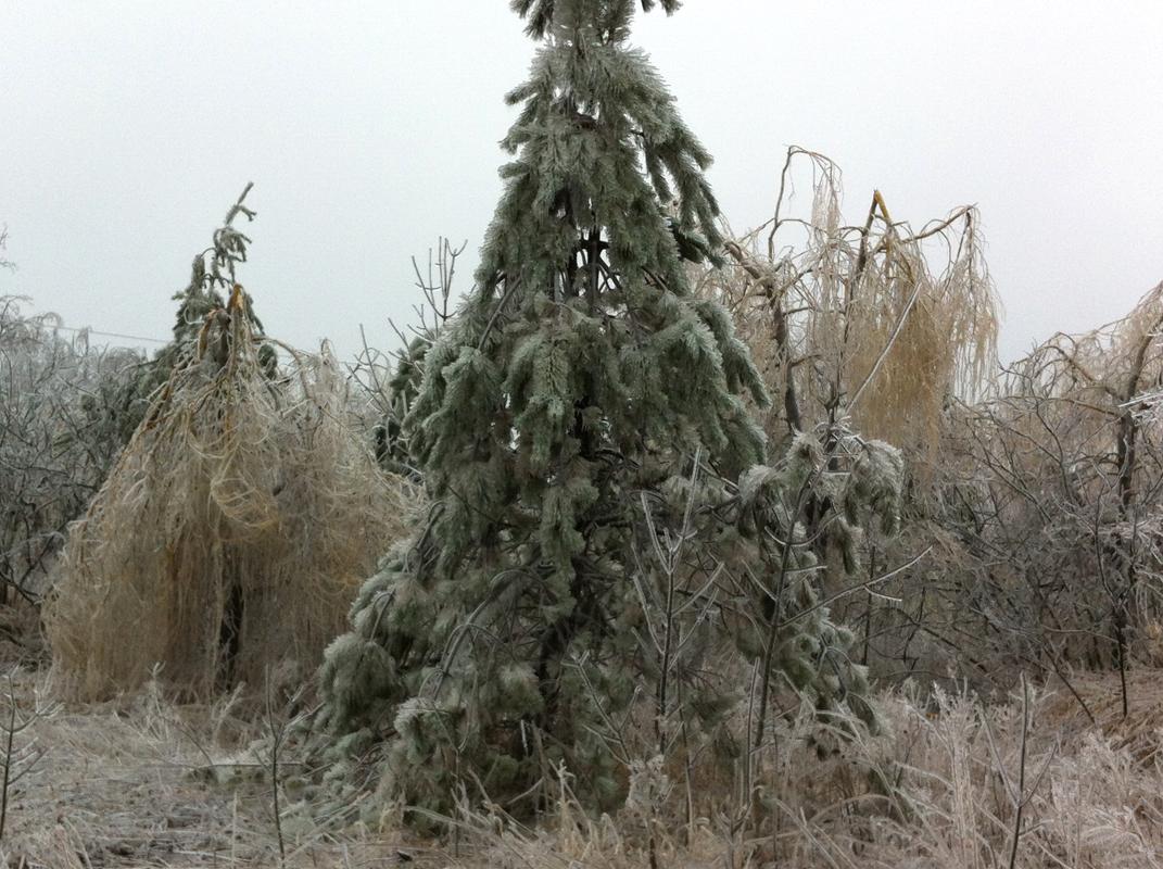 icestorm4.JPG