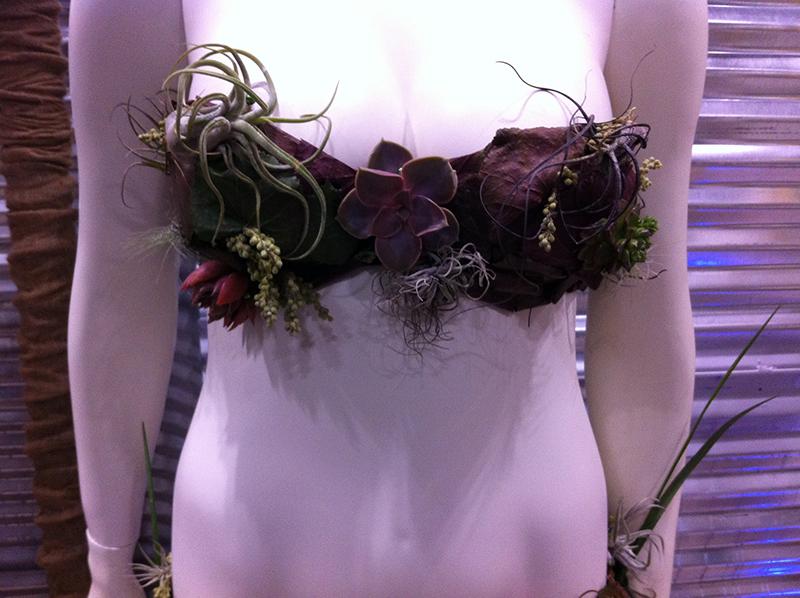 A succulent bikini! Now that's wild!!!