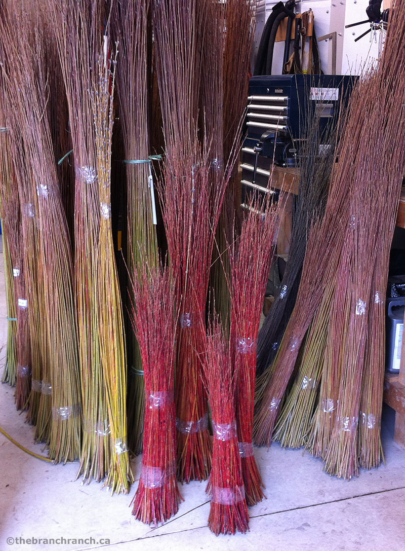 Colourful bundles of graded willow in Lene's workshop.