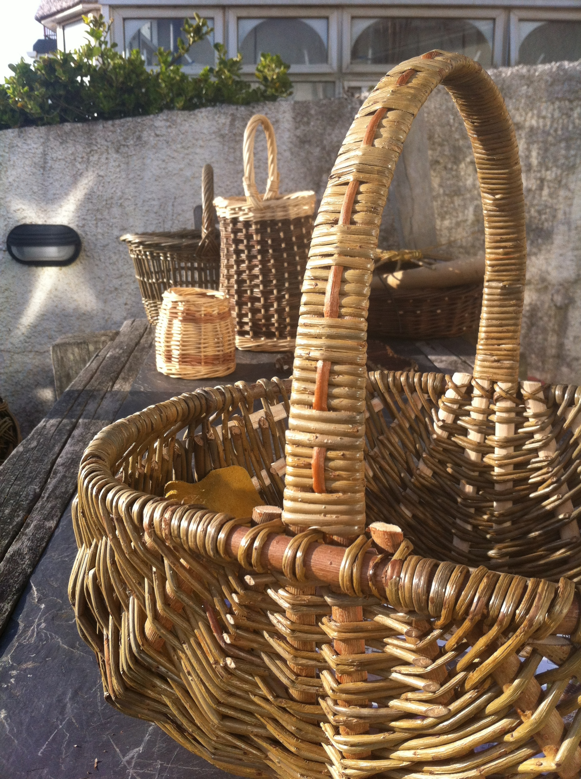 Dried willow basketry.