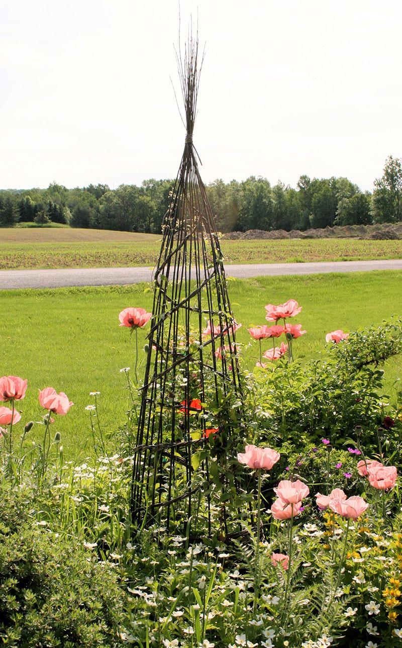 Rose's Large Obelisk looks fantastic in her idyllic garden..