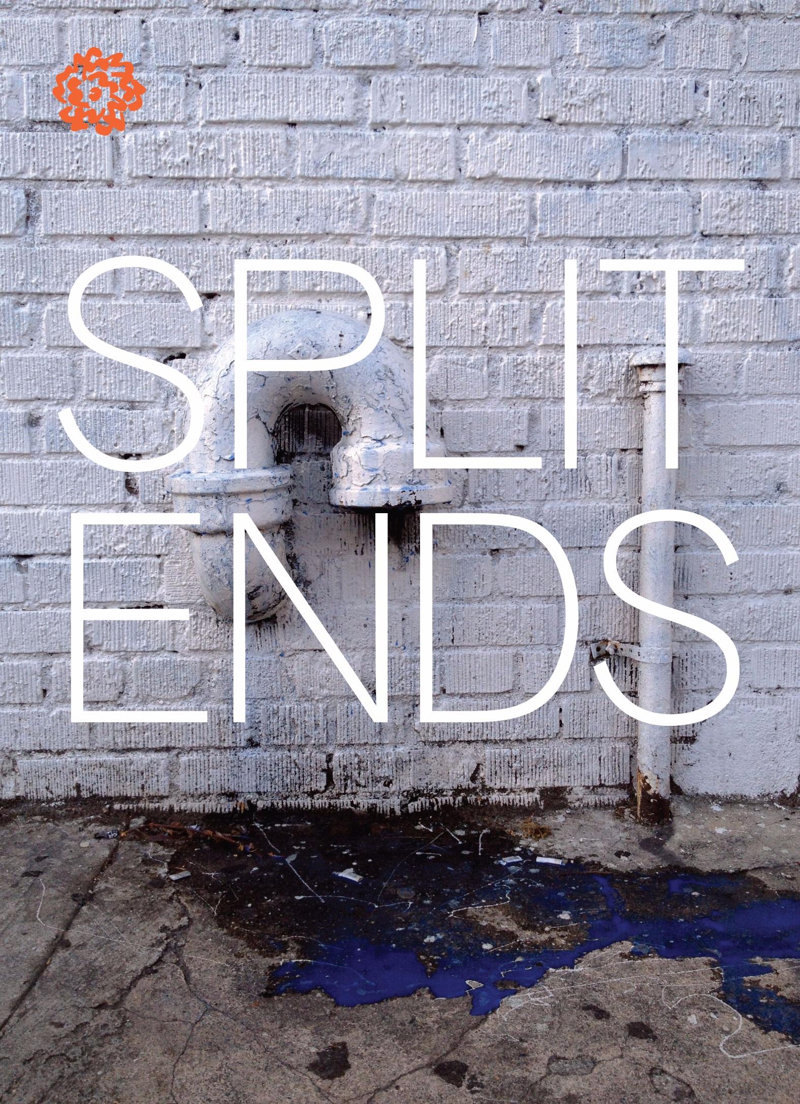 SplitEnds.jpg