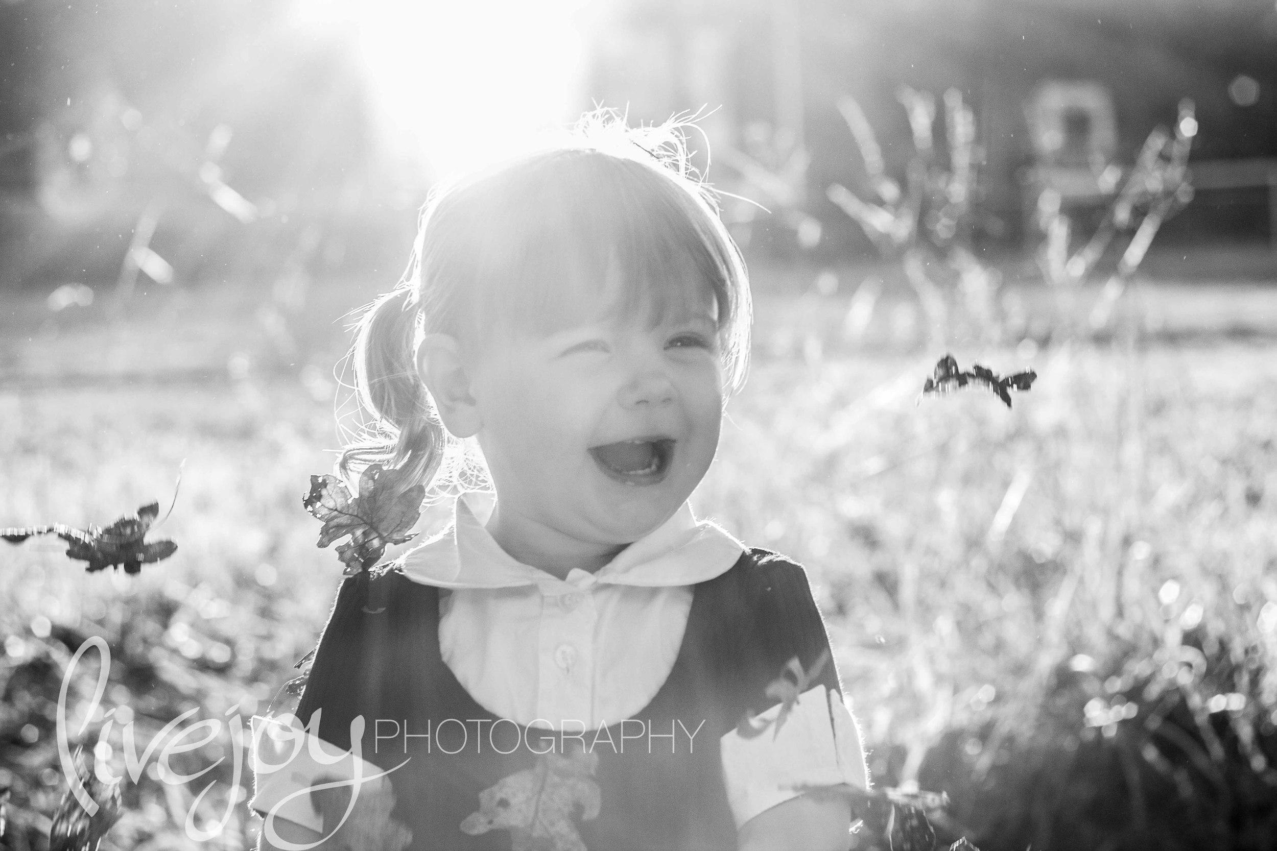 Lily13.jpg