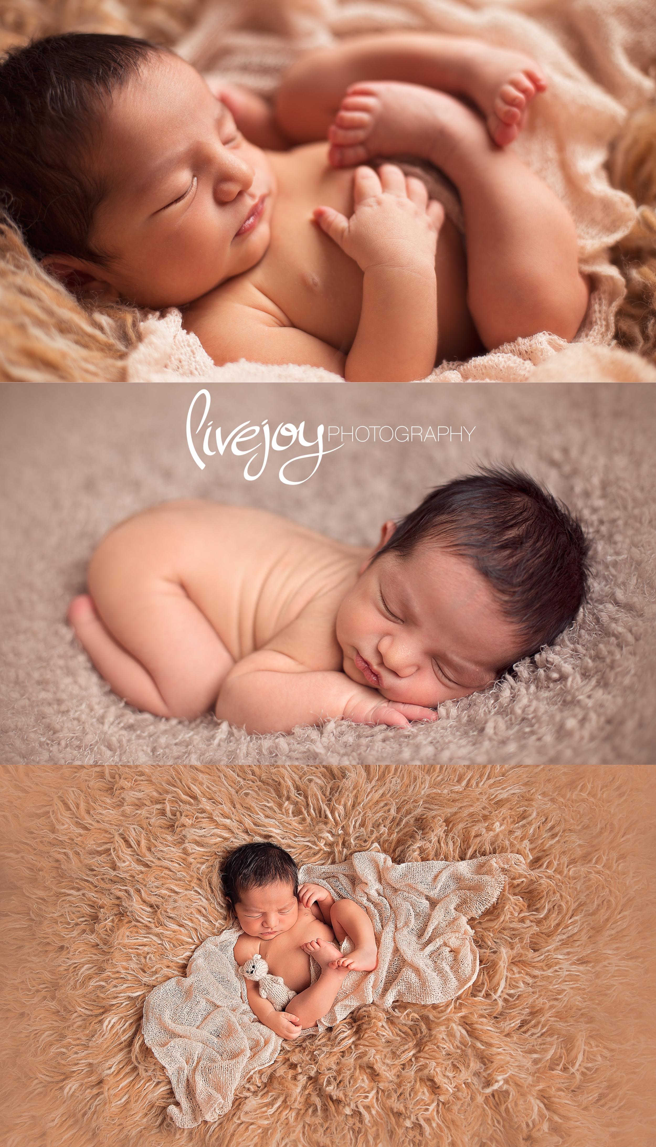 Newborn Photography | Oregon | LiveJoy Photography