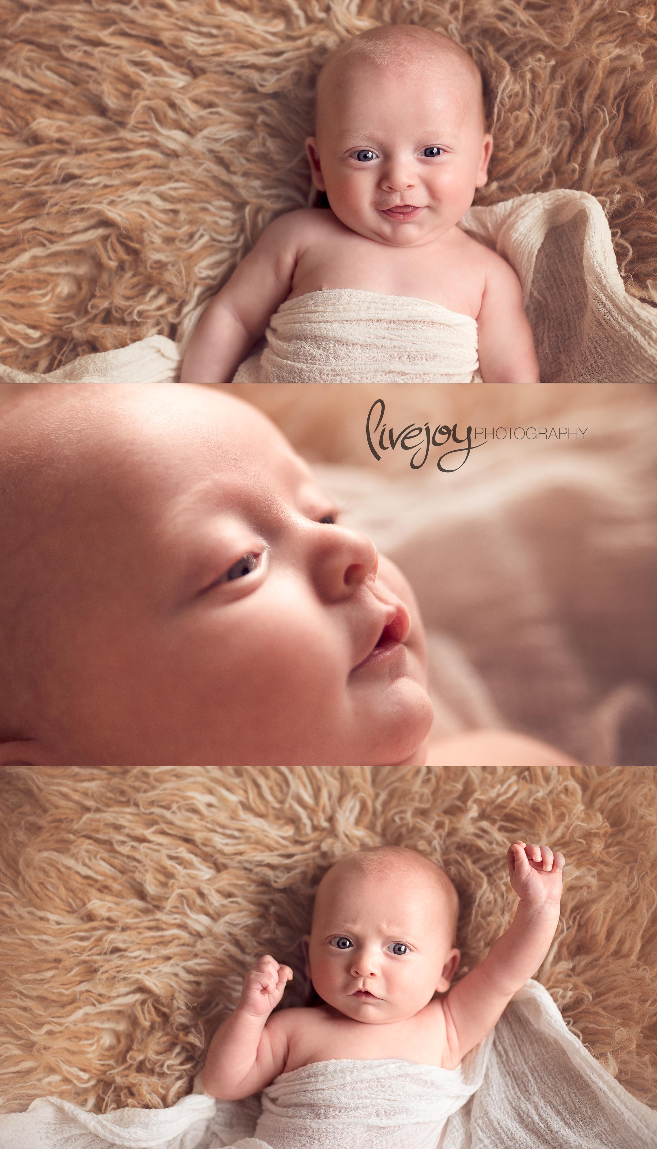 Baby Photos   LiveJoy Photography