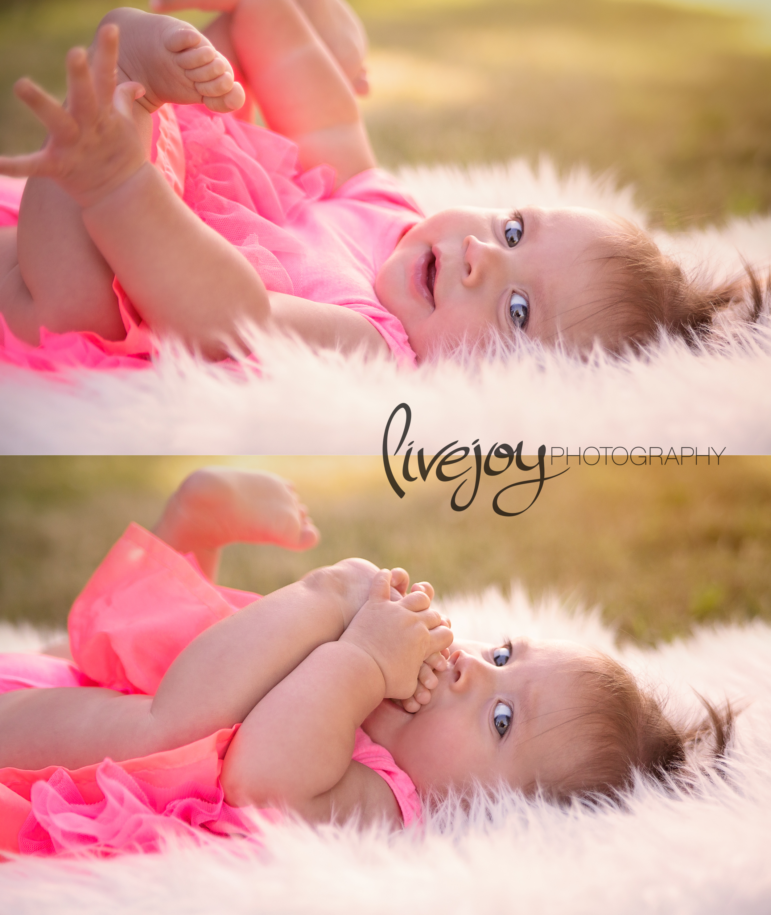 6 Month Photography | LiveJoy Photography | Oregon