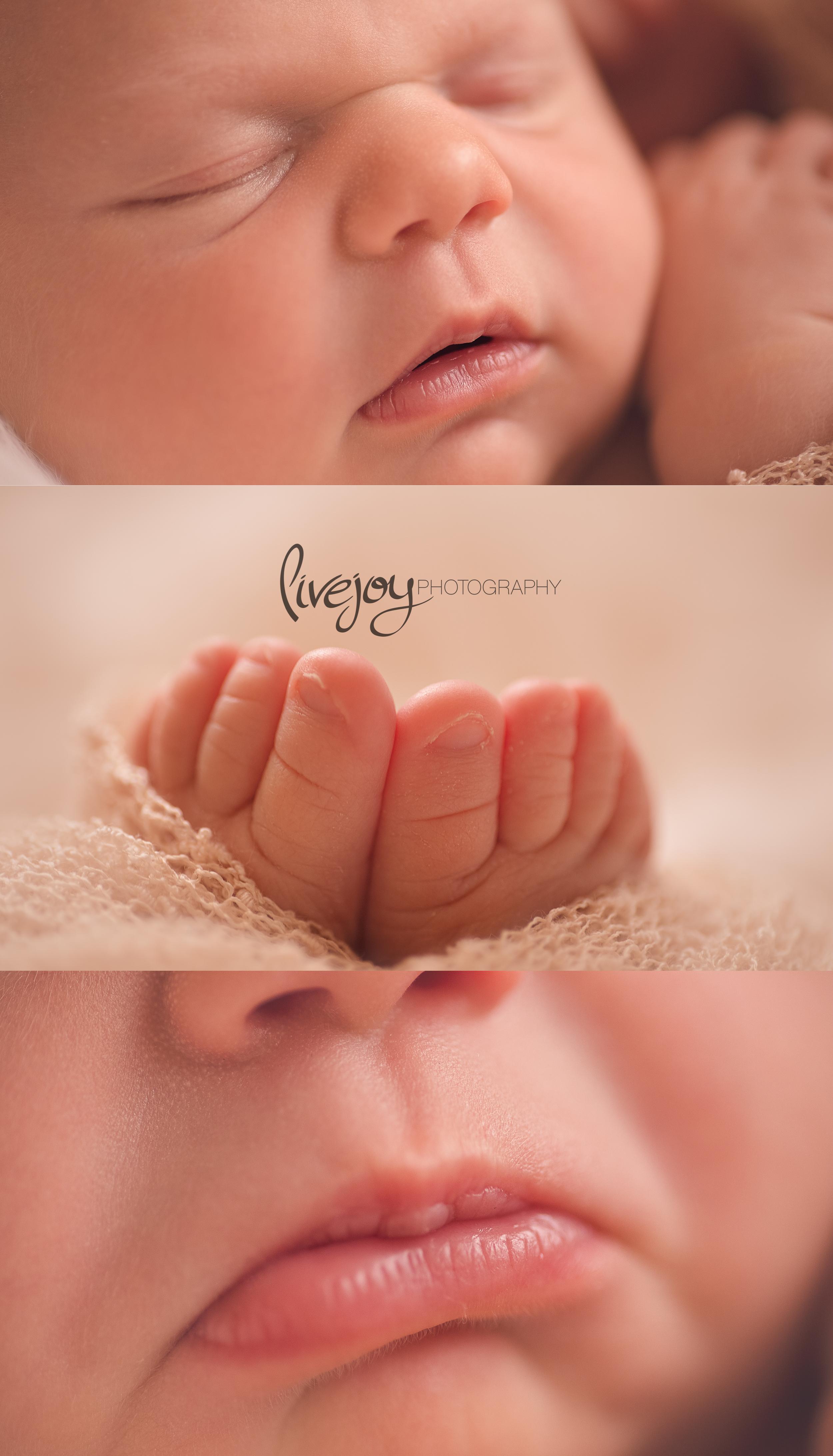 Newborn Girl Photography macro | Oregon | LiveJoy Photography