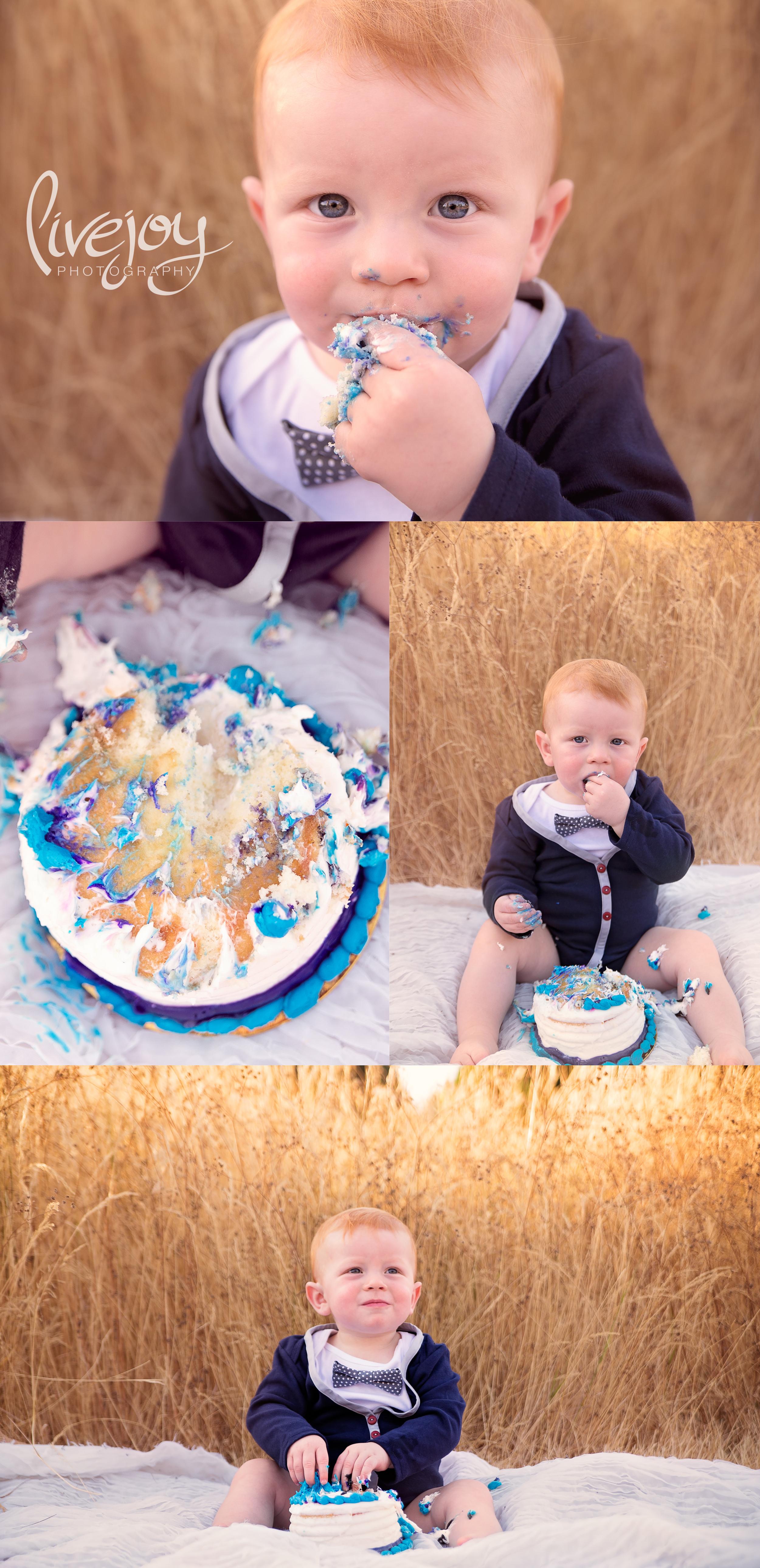 1 Year & Cake Smash | LiveJoy Photography | Oregon
