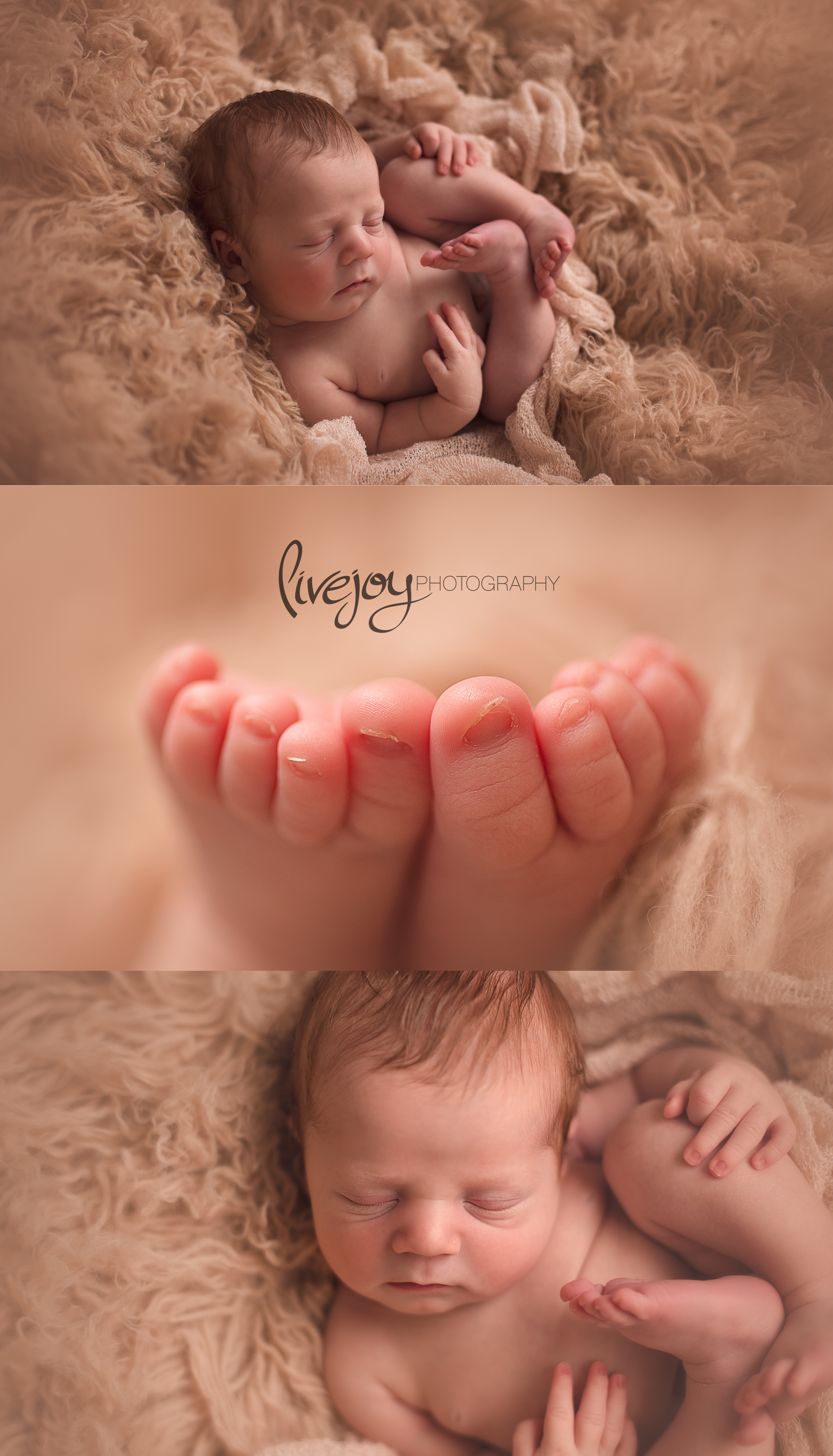 Newborn Photography   Salem, Oregon   LiveJoy Photography