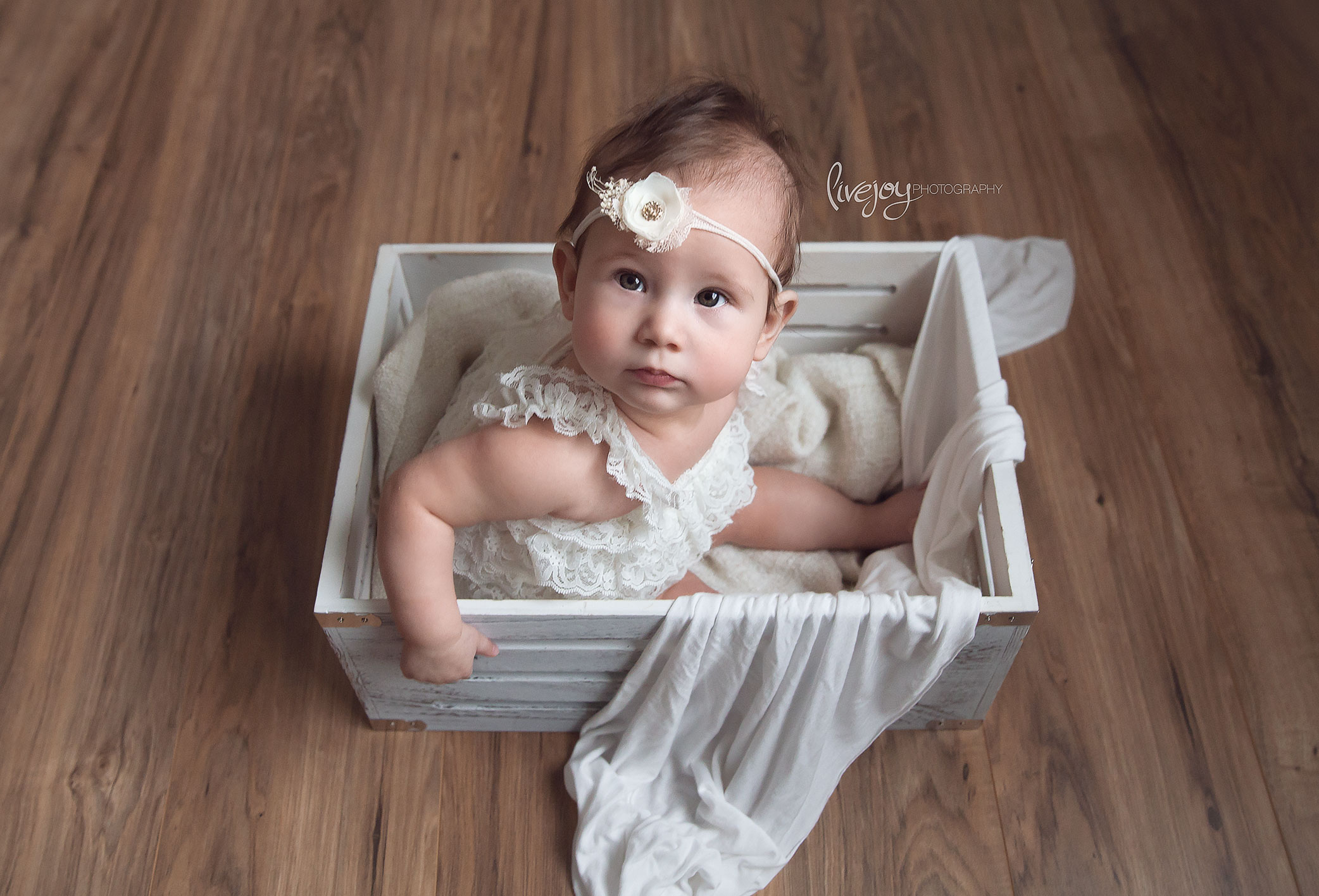 Six Month Girl Photography | Oregon | LiveJoy Photography