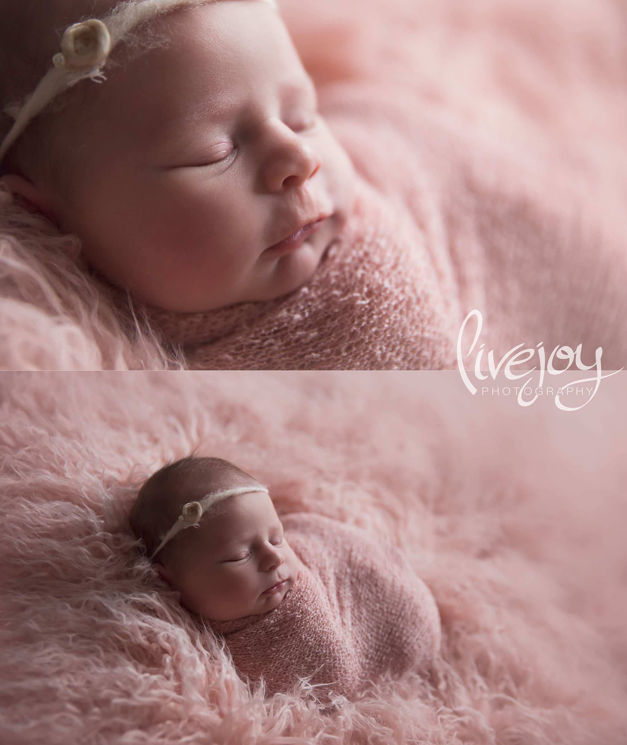 Newborn Photography Girl | LiveJoy Photography | Oregon