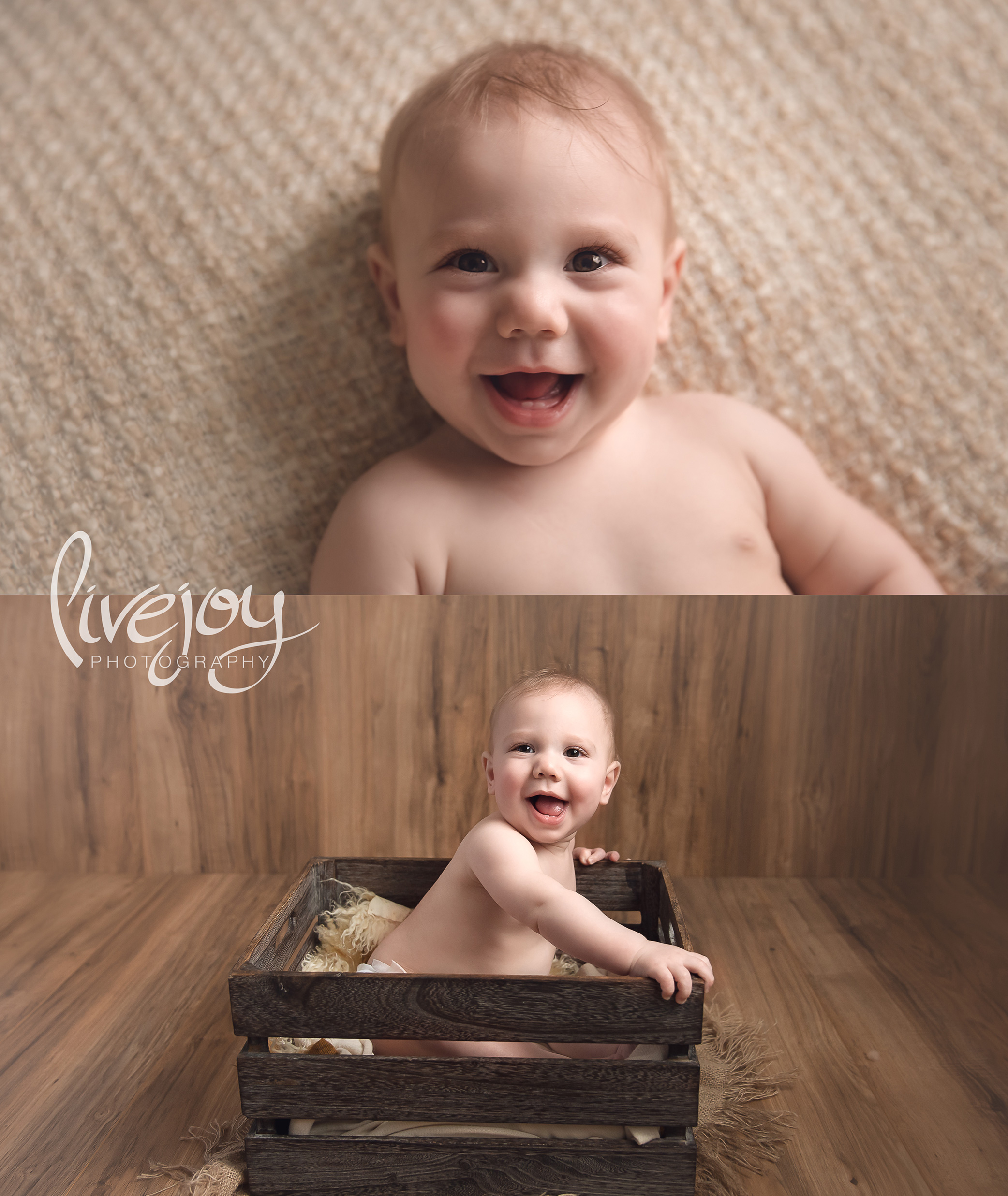 6 month Old Baby Photos | Oregon | LiveJoy Photography