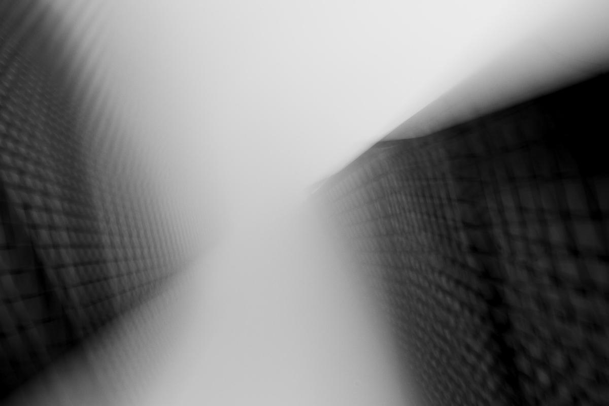 Mies van der Rohe by Liam Philley (9 of 16).jpg