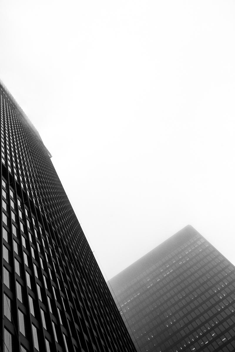 Mies van der Rohe by Liam Philley (10 of 16).jpg