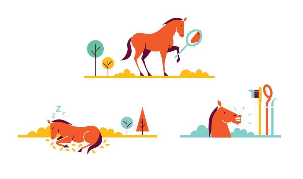 horse04.jpg