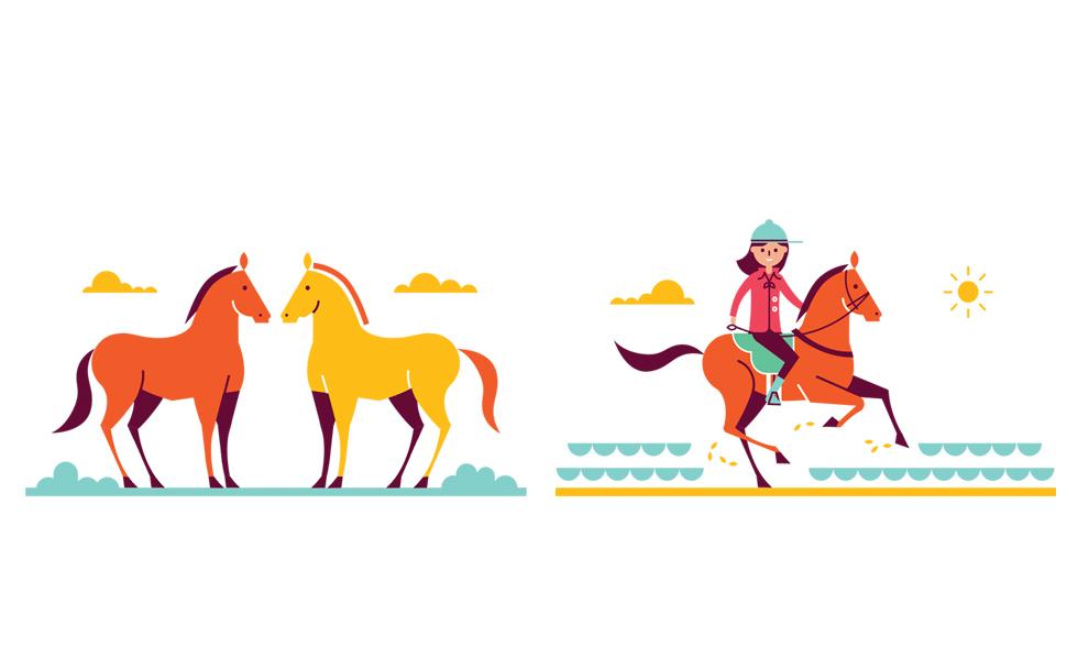 horse05.jpg
