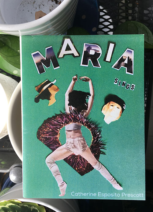 Published by dancing girl press in 2017,  Maria Sings  is the story about a women named Maria, who is diagnosed with cancer. Maria is surrounded by a group of friends, a chorus, many of whom are named Maria. Maria becomes a symbol, a figure encapsulating the experiences of all women.A short examination about what being a woman in today's society, about the feminine, about disease and healing, about serendipity and hope,  Maria Sings  is a celebration of womanhood, about a woman's determination to heal, and about her finding her voice.