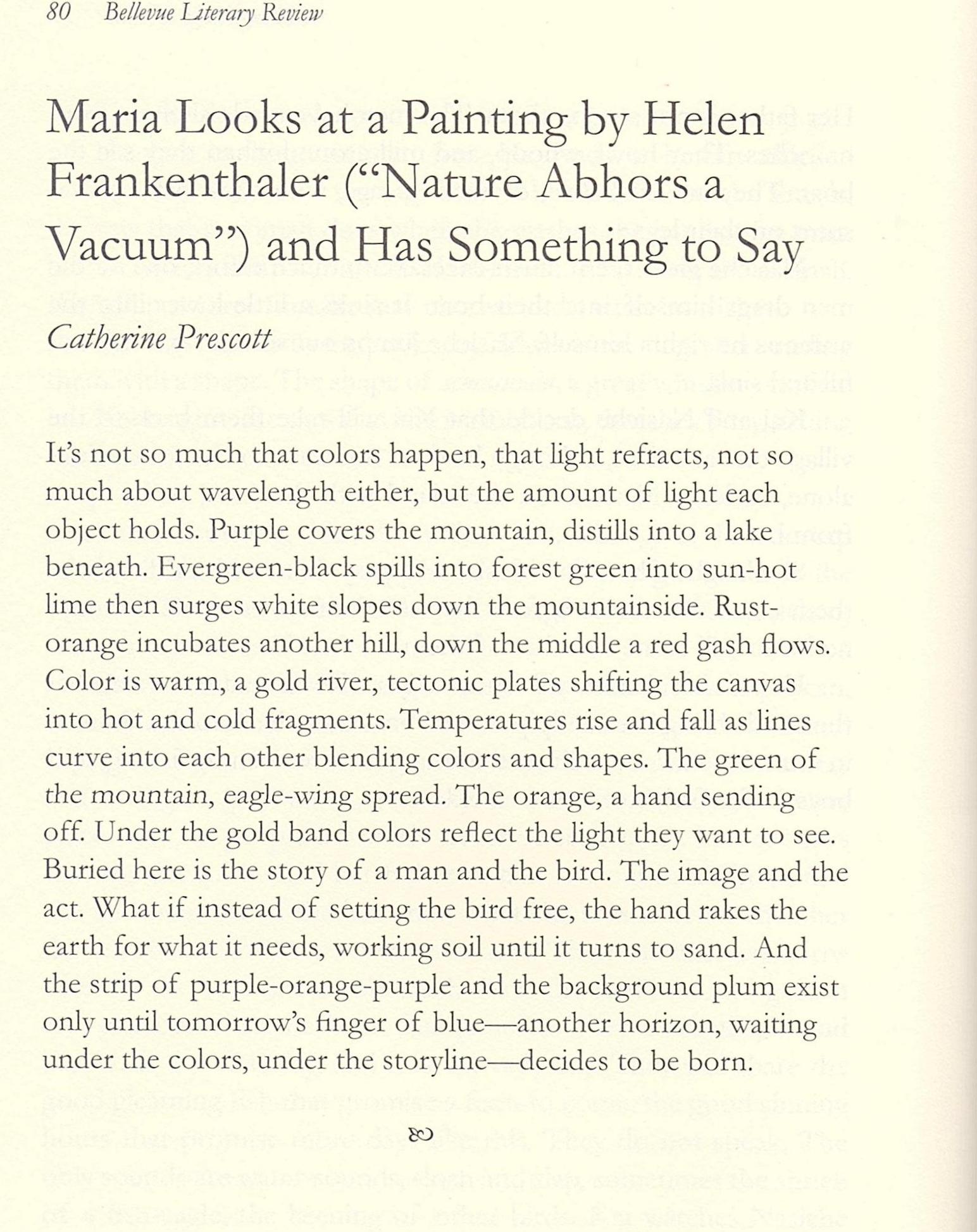 bellevue literary review (1).jpg