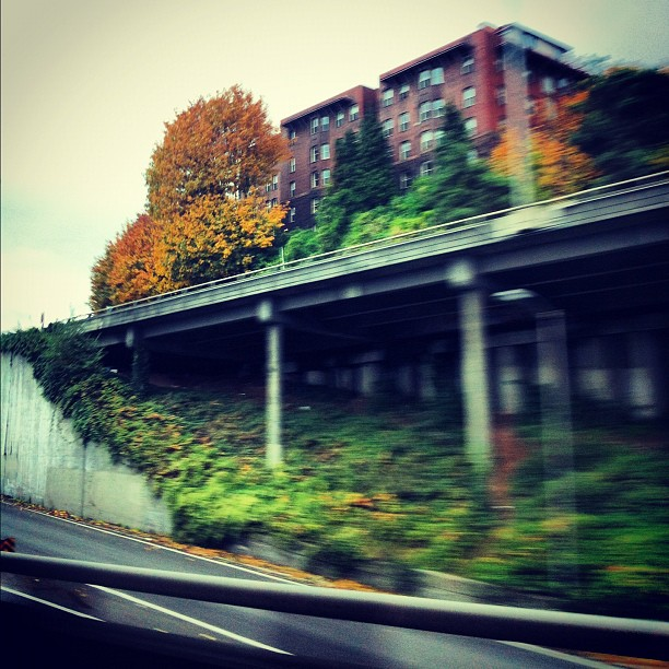 freeway-seattle_8152300978_o.jpg
