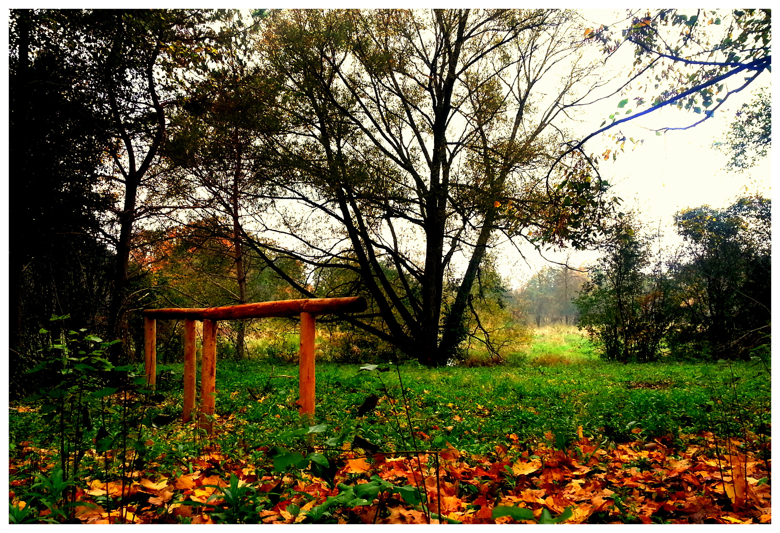 Remote Camp (The Island) Hitching Posts in Fall Colours