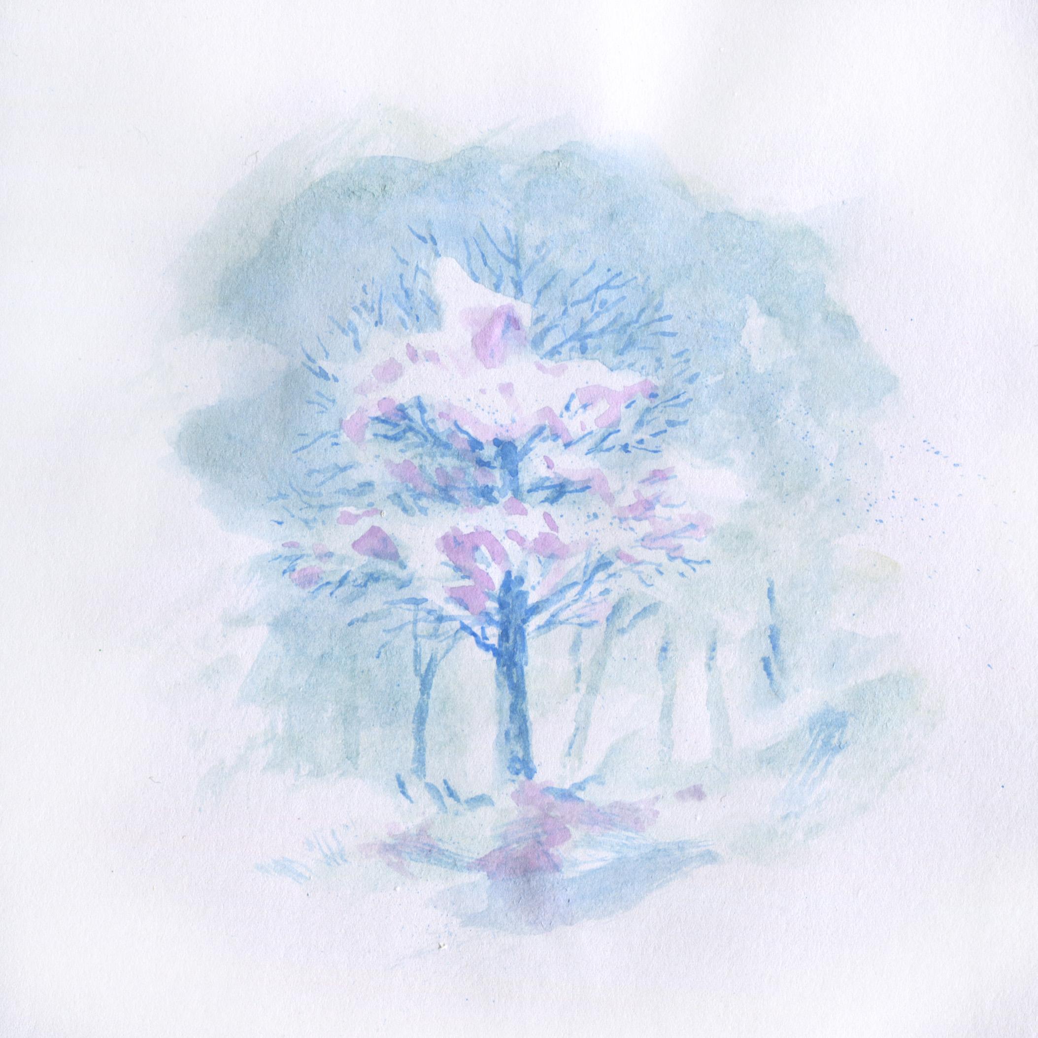 Neige sur un arbre.jpg