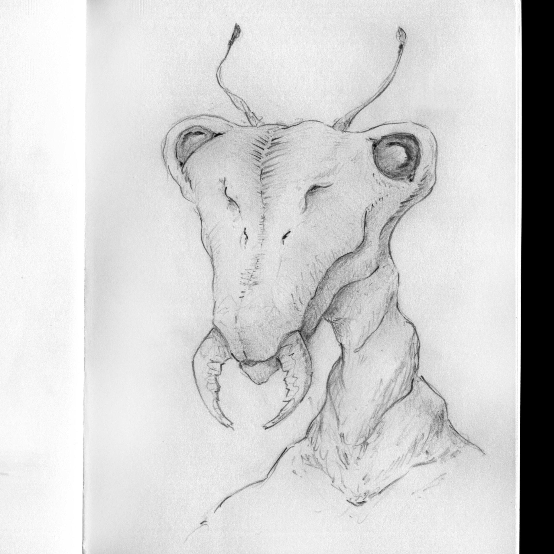 Insectoïd--head-sketch.jpg