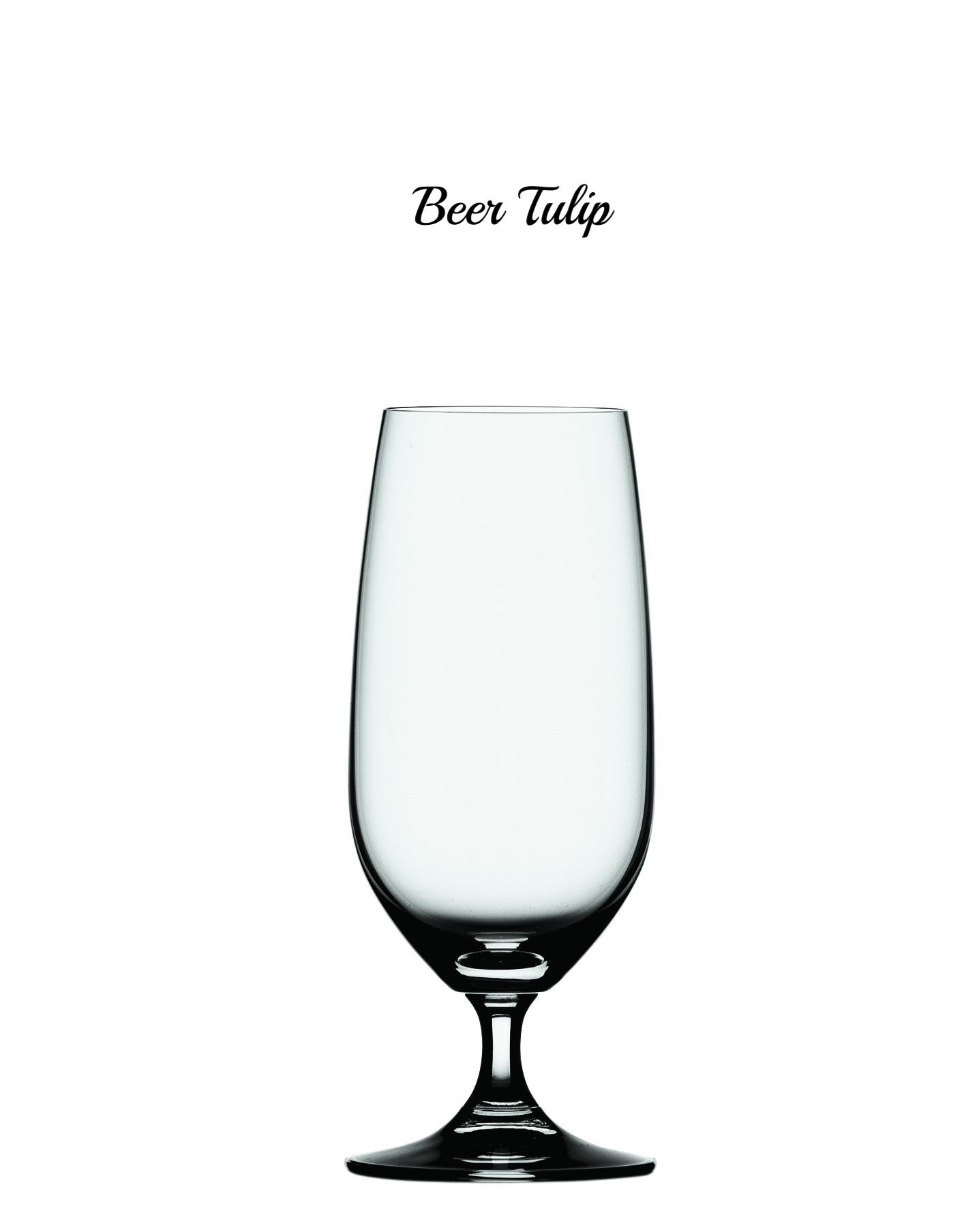 Beer Tulip 4510274.jpg