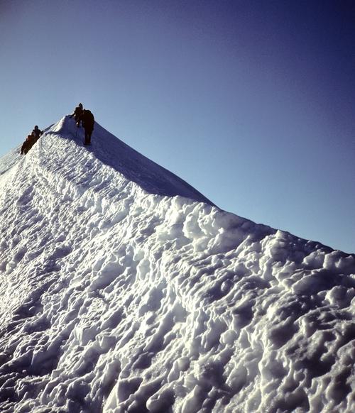 Mont+Blanc+-+summit+ridge.jpg