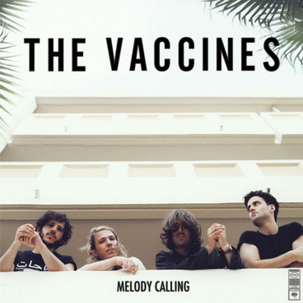 Melody Calling / The Vaccines