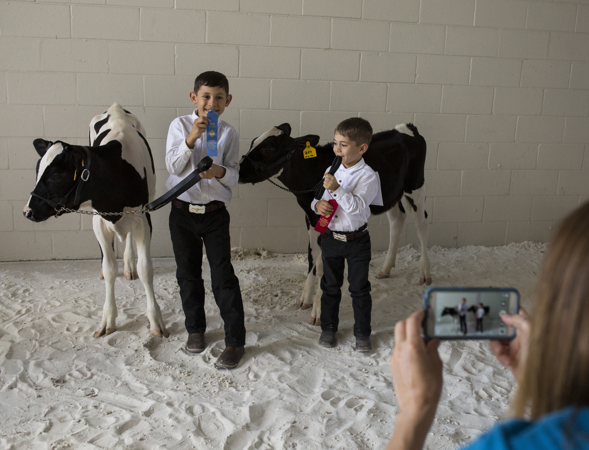 Alex Busciglio, 9, and Dominic Busciglio, 5, pose for a photo taken by their mom, Jana Busciglio, after showing Holstein calves at the Florida Strawberry Festival on March 4, 2017, in Plant City, Florida.