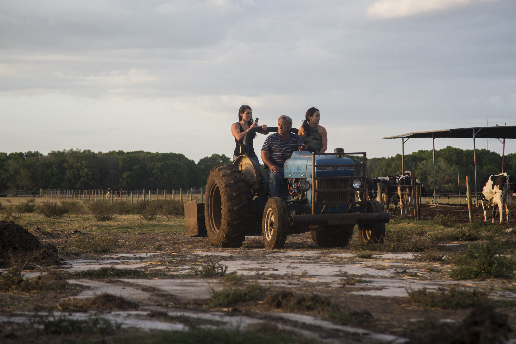 "Savannah Busciglio, Sammy Busciglio, and Samantha Busciglio-Payne ride on a tractor back to the barn at Tower Dairy, after taking a family portrait on March 26, 2017. Savannah and Samantha are Sammy's daughters.   ""I wish there was some way we could buy it,"" Sammy said, referencing the family property in Tampa. ""We could make it a showcase place. We could make it a place where we could teach children where milk comes from."""