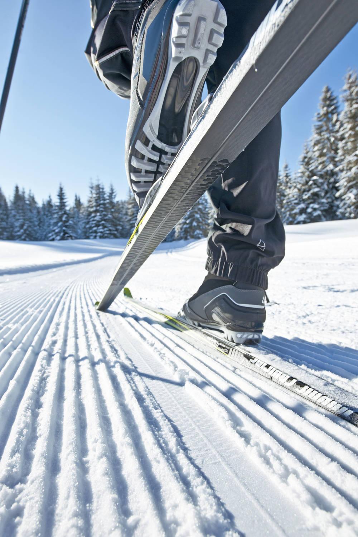 Nordic Ski low.jpg