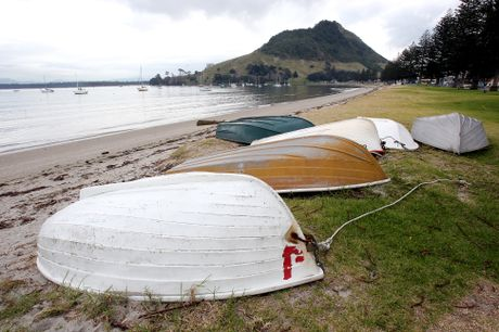 A part of the landscape of Pilot Bay, its dinghies, could be in for a big sorting out. Photo: Mark McKeown