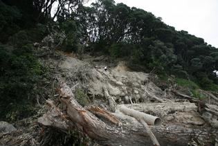 One of the major slips on the tour of the damages on Mauao - Sam Ackland.