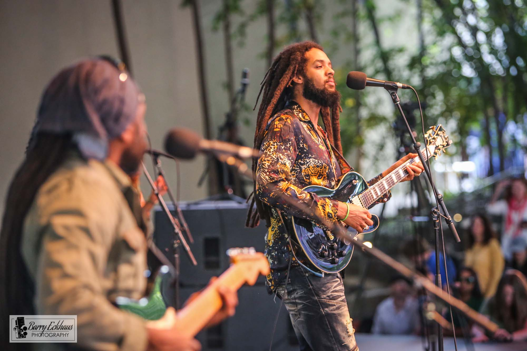 Concert photography of The Wailers at the Ford Amphitheatre, Vail, Colorado.