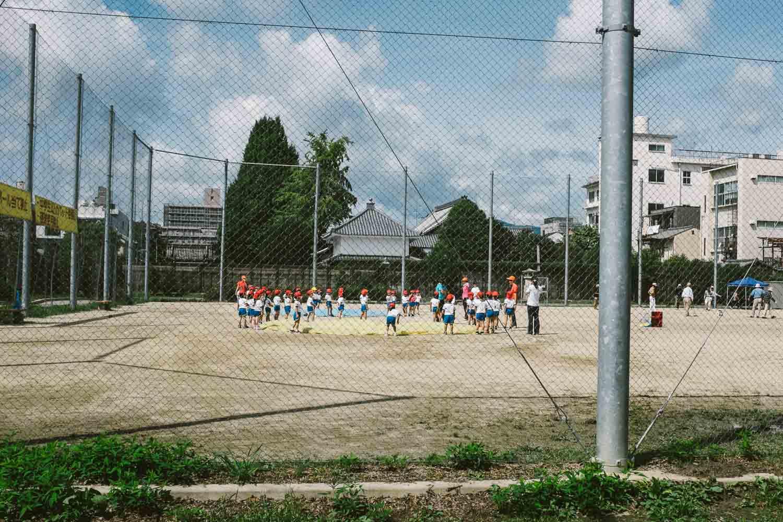 Japanica-7353.jpg