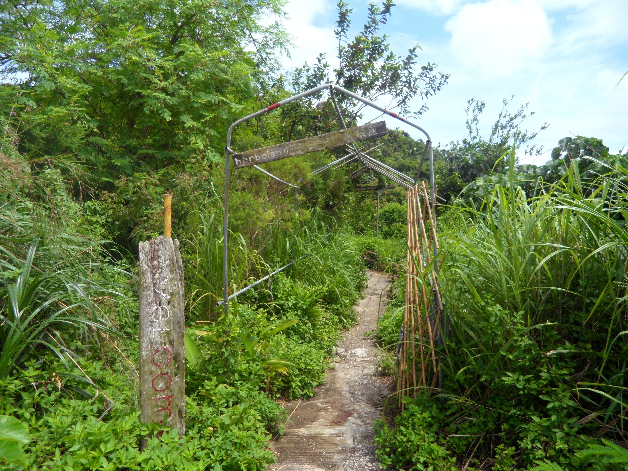 Herboland: Hong Kong's organic herb farm