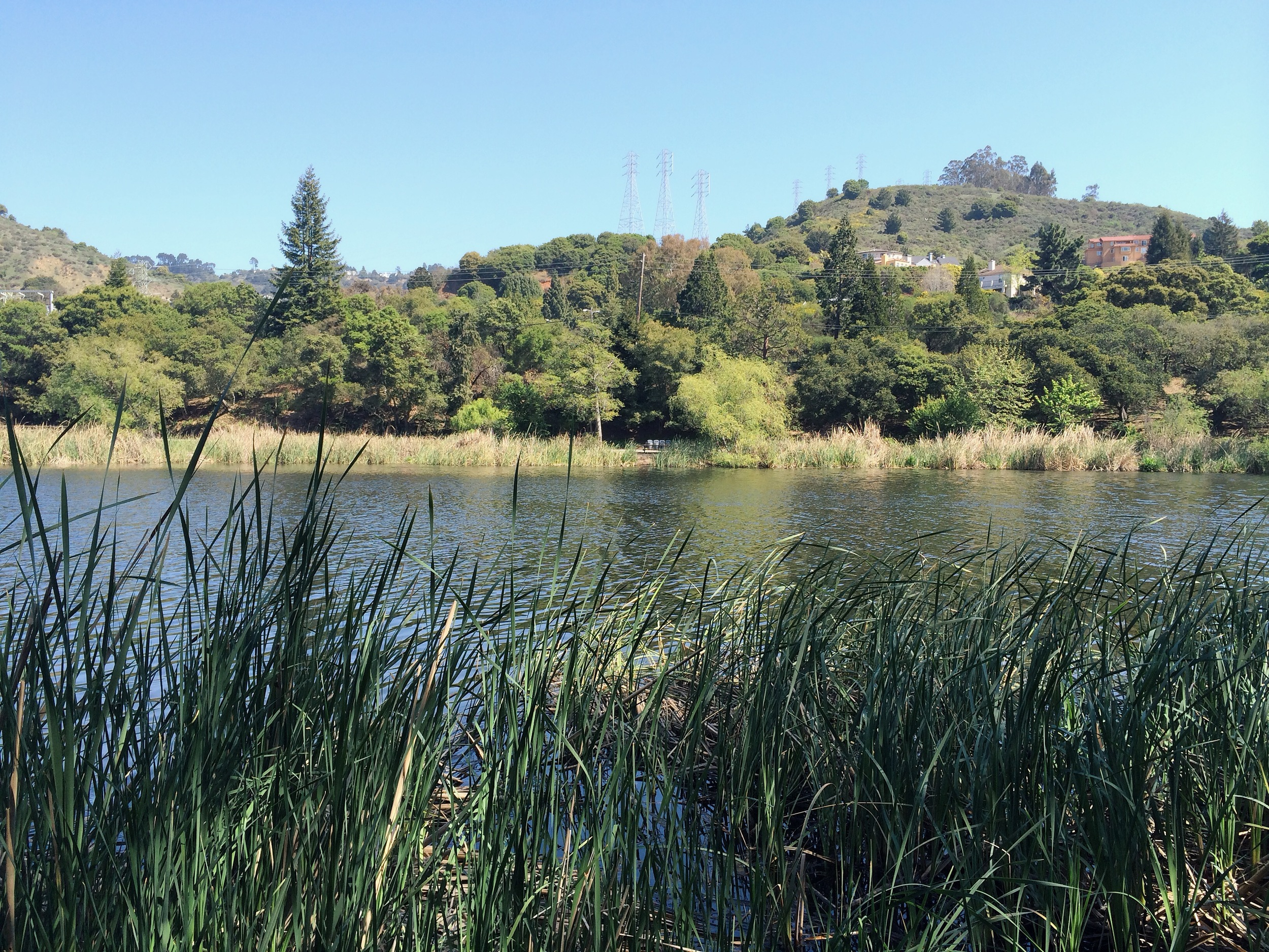 laketemescal
