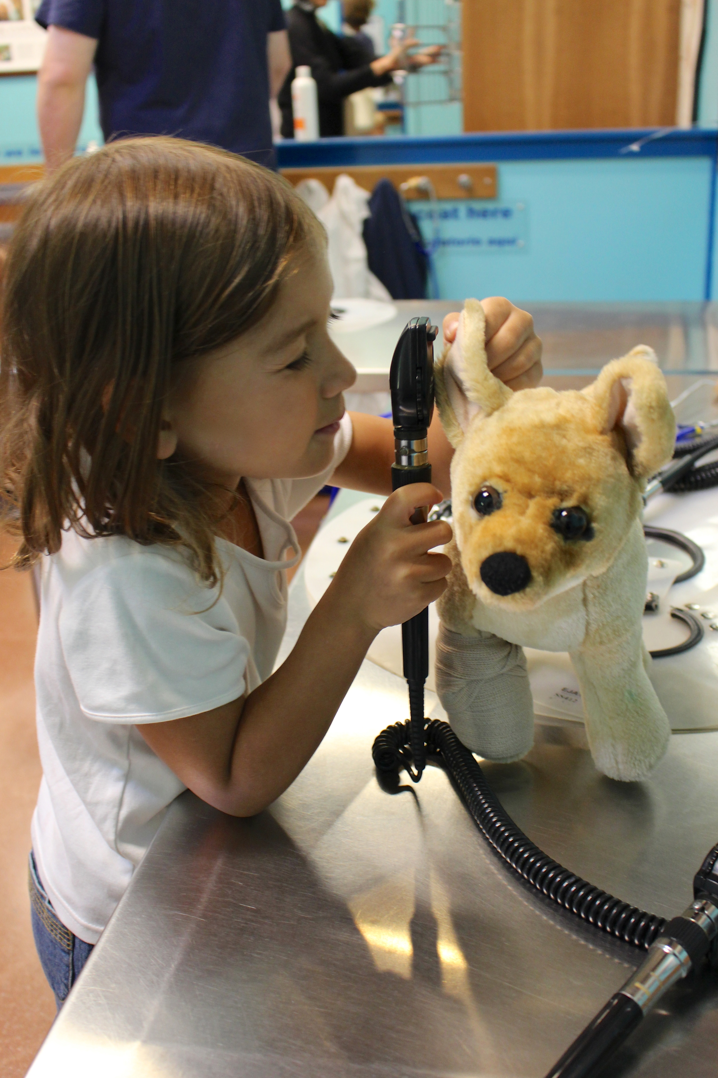 My daughter e xamining the ear of a furry patient at    Portland Children's Museum