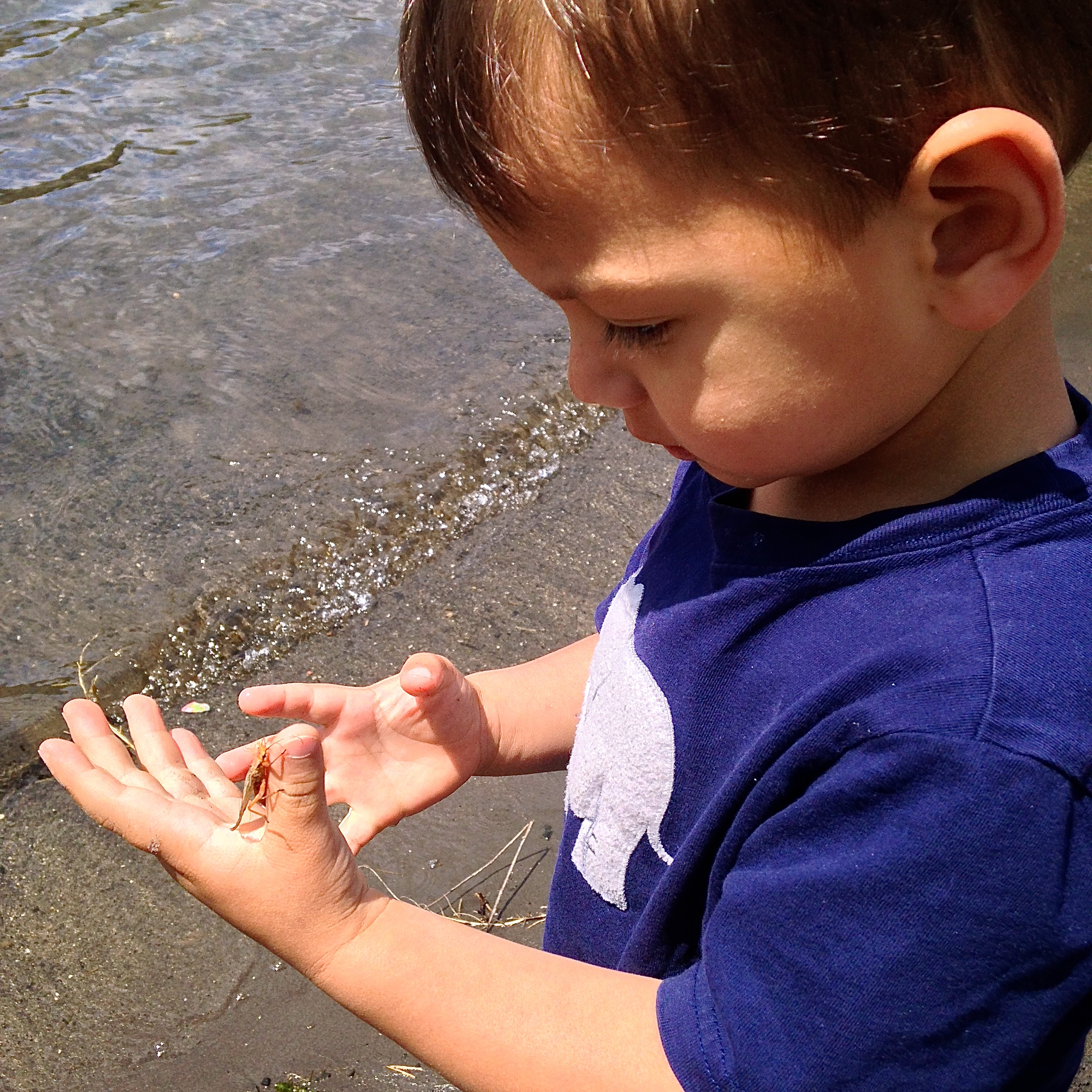 My son inspecting a salmon fly on the Deschutes shore
