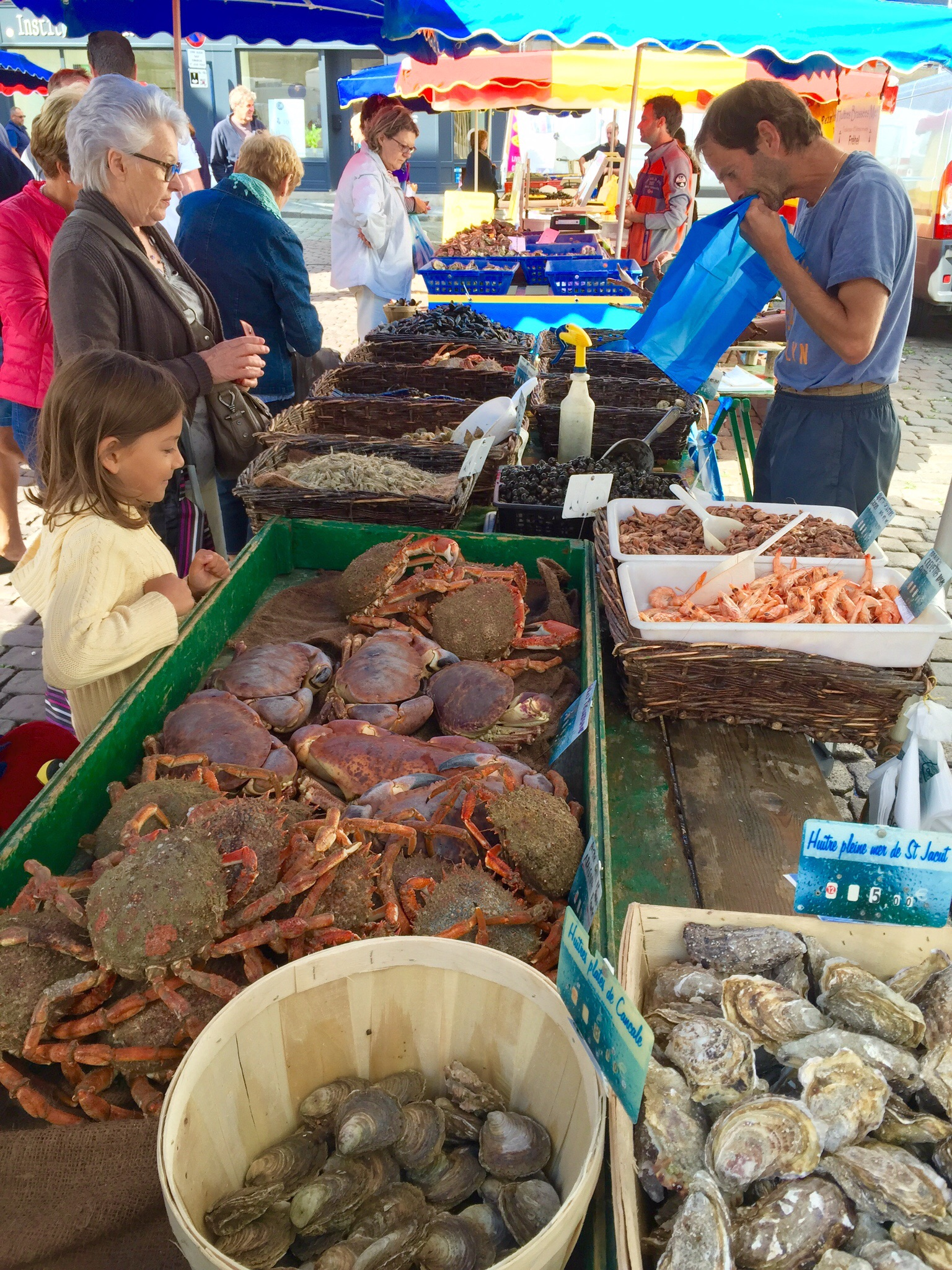 Checking out the seafood at an open-air market in   Bretagne, France