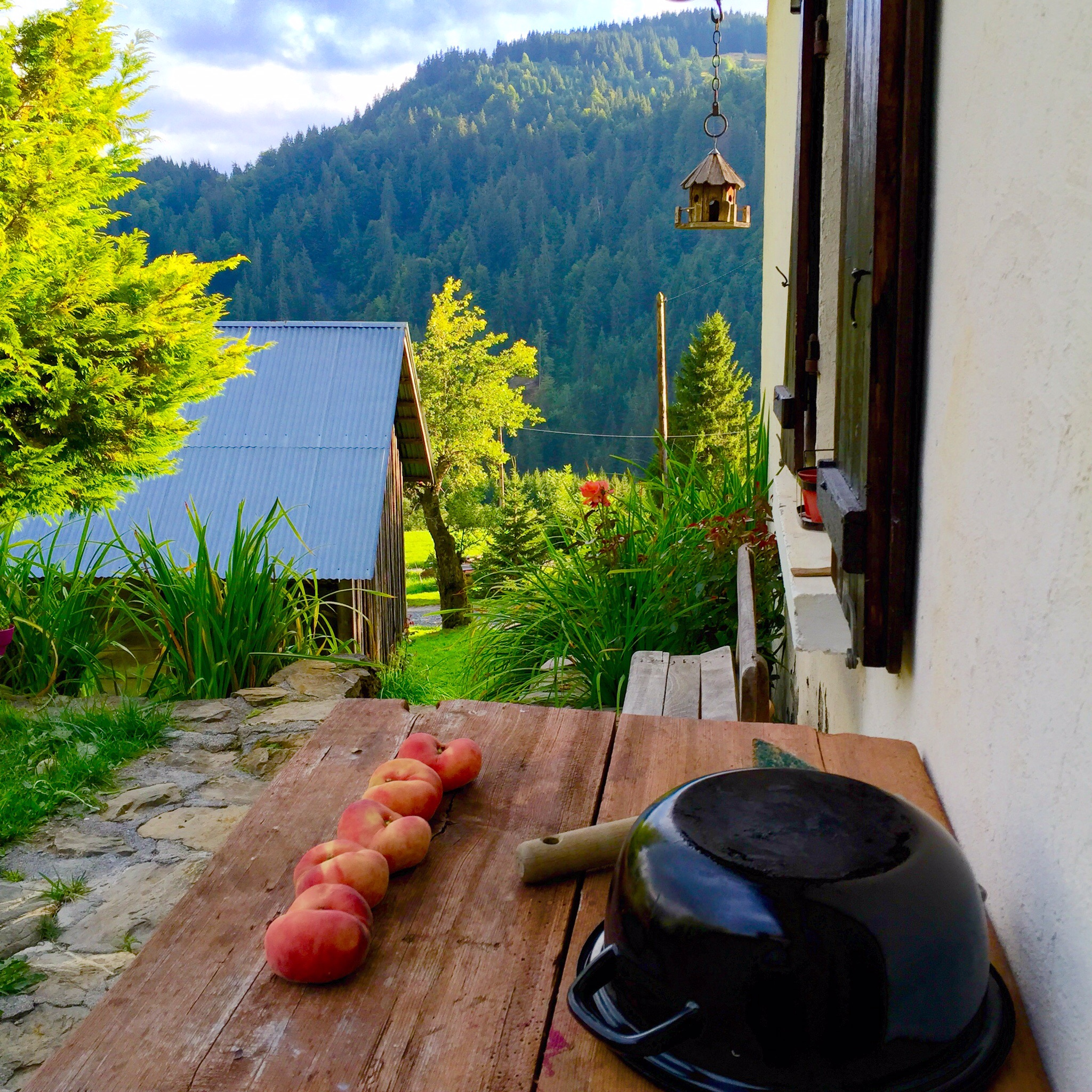 Peaches ripening on the porch